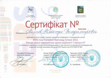 Certificate Karpov D.V 3
