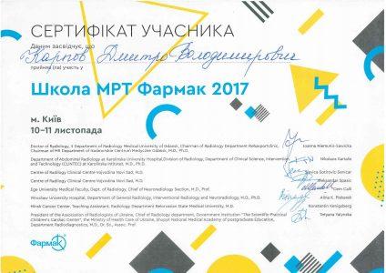 Certificate Karpov D.V 8