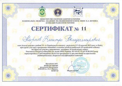 Certificate Karpov D.V 9